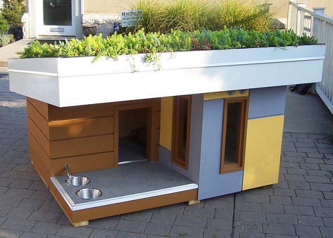 Очень компактная современная будка для собаки