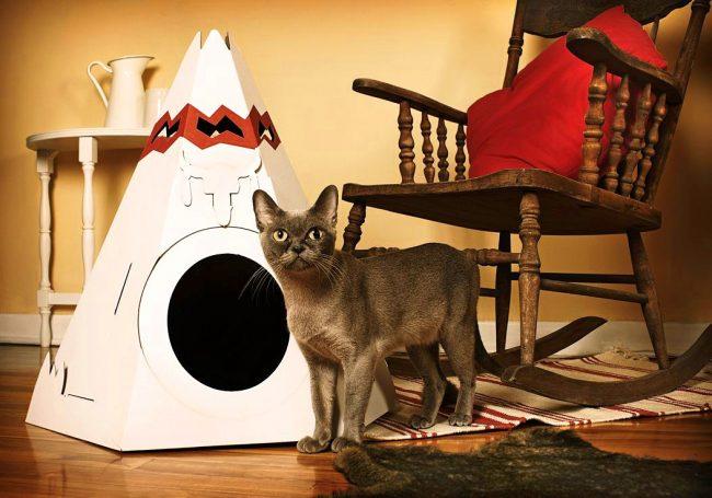 Картонный вигвам - теперь каждая кошка сможет вообразить себя самым настоящим индейцем