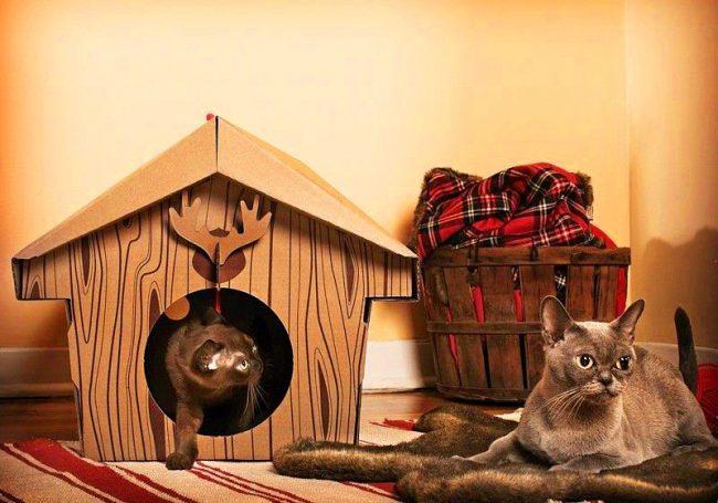 Картонный домик в канадском стиле придется по душе скромным кошкам