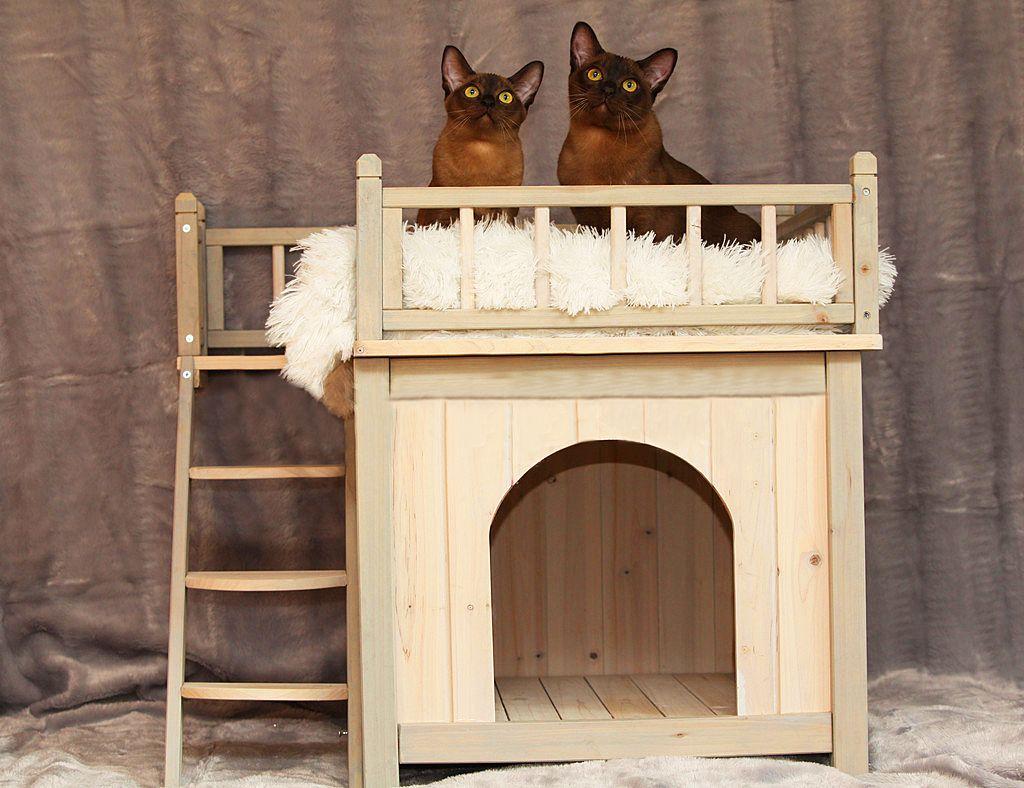 Кровать для кошки из дерева 114
