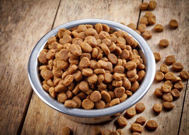В пользу сухого корма говорит тот факт, что многие известные компании ставят его выпуск в приоритете. А владельцы именитых питомников все чаще выбирают за основу сухой корм для кошек