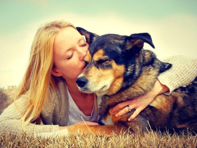Взяв собаку из приюта, вы получите верного и преданного друга. К тому же, вам не нужно платить за нее баснословную сумму