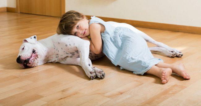 Вот так выглядит любовь. Аргентинский дог - дружелюбный пес, который легко находит подход к детям