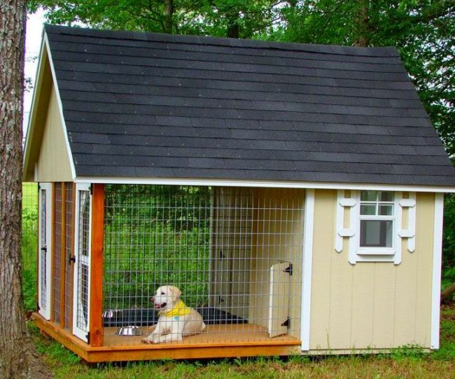 http://kot-pes.com/wp-content/uploads/2015/06/Enclosures_for_dogs_06-650x542.jpg
