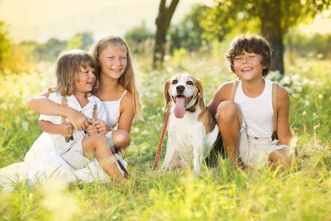 Главный козырь: твои родители тоже когда-то были детьми и, наверняка, тоже хотели собаку. Напомни им об этом