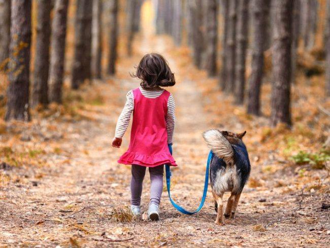 Пообещай, что выгул собаки - будет твоей прямой обязанностью. В любую погоду, утром, и вечером