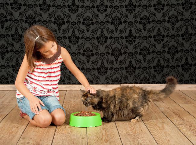 Различные породы кошек не восприимчивы к отличиям в рационе. Однако, некоторые производители выпускают корма для отдельных пород. Если есть возможность, то лучше покупать специальные корма