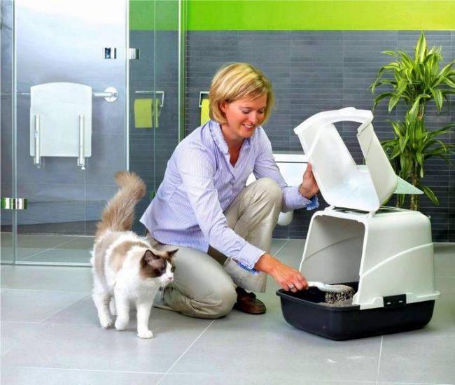 Туалеты для кошек закрытые удобны для ваших кис и легко чистятся