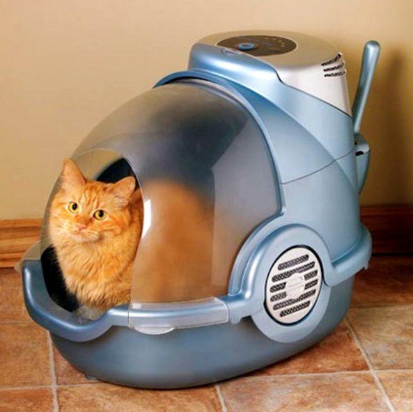 Туалеты для кошек закрытые бывают и автоматизированные, похожие на космический корабль