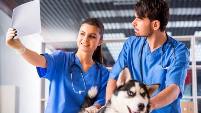 В круглосуточных клиниках вы сможете сделать рентген и любые другие виды обследования