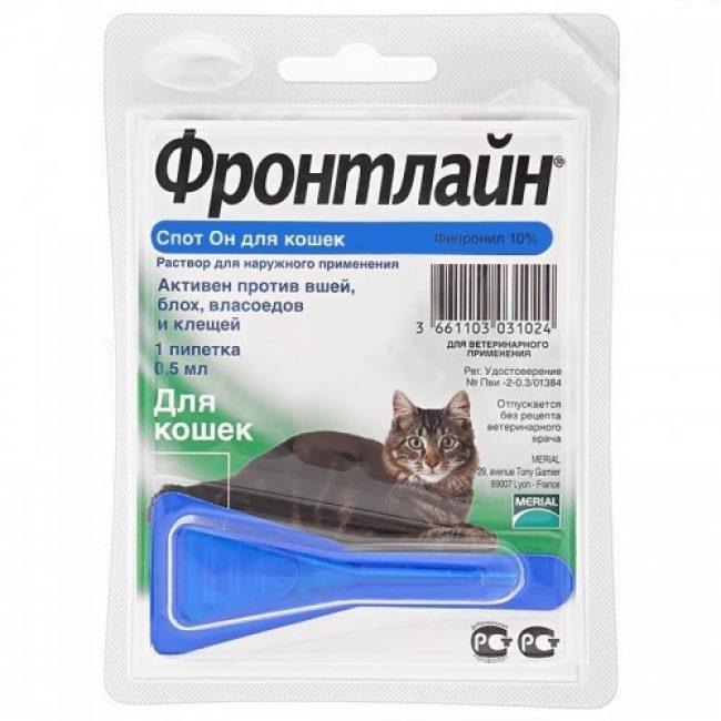 Средства от блох для кошек и котят: обзор наиболее эффективных.