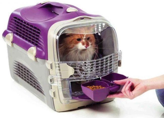 Купить переноску для котов недорого