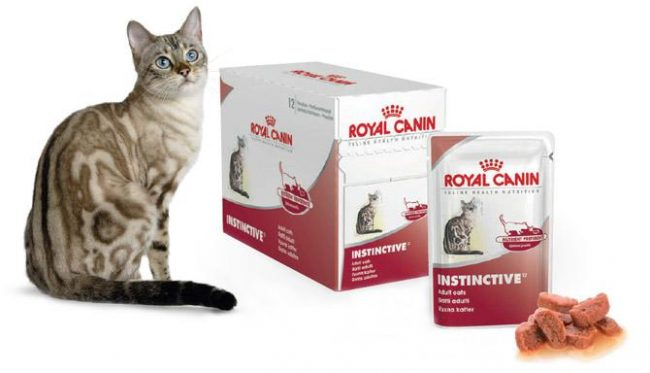 Сухой корм для кошек Роял Канин