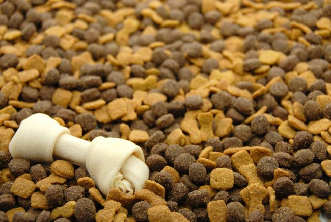 Холистик корм для собак