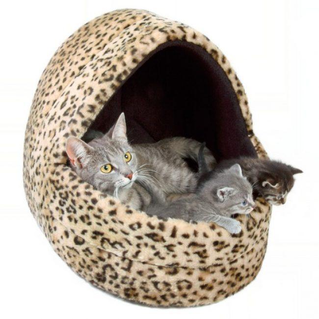 Лежанки для кошек своими руками из картона 2