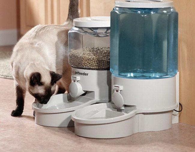 Миски для кошек
