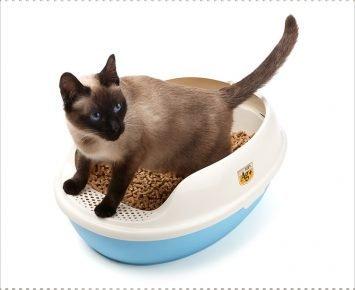 Гигиенический лоток для кошки