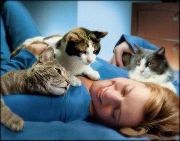 Коты с хозяйкой