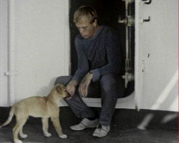 Кадр из фильма «Солёный пёс»