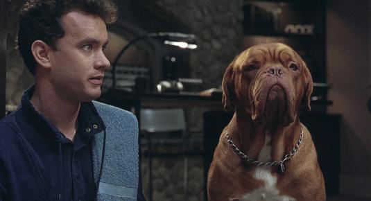 Кадр из фильма «Тернер и Хуч»