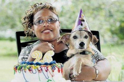 Самый старый пёс на 2013 год