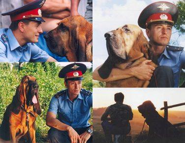 Какая собака снималась в фильме «Участок»
