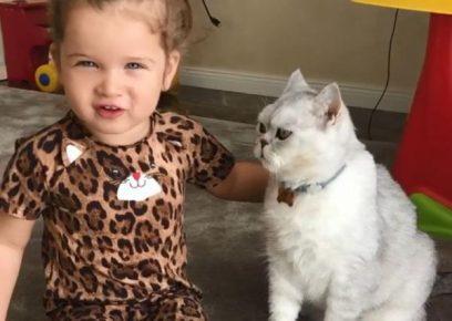 Дочка Бородиной с кошкой