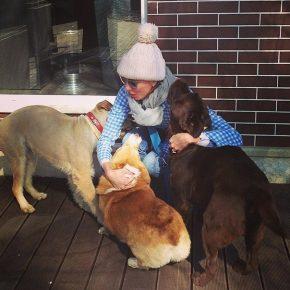 Светлана Бондарчук с собаками