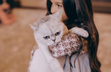 Кошка Бородиной на руках