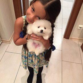 Дочь Ксении Бородиной с собакой
