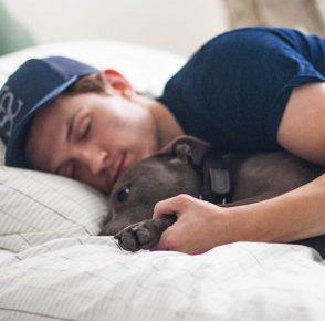 Холланд в кровати с Тесси