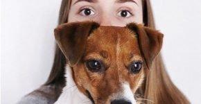 Какая порода собак у Саши Спилберг