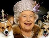 Какая собака у английской королевы