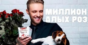 Какая собака у Егора Крида