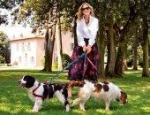 Какие собаки у Юлии Высоцкой