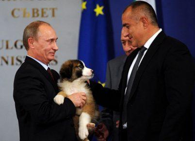 Вручение болгарской овчарки Путину
