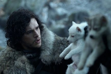 Джон Сноу с щенком лютоволка
