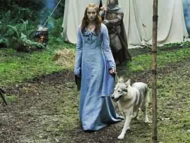 Санса Старк с Леди