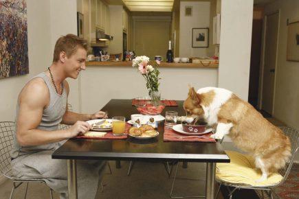 Алексей Воробьёв обедает со своей собакой