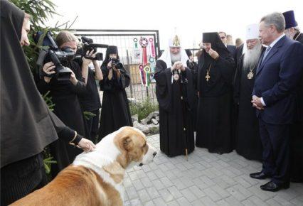 Среднеазиатская овчарка Патриарха Кирилла