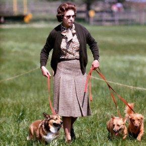 Елизавета II гуляет с собаками