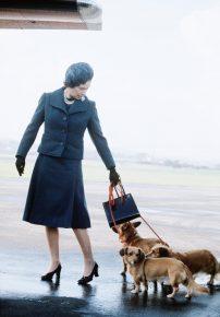 Английская королева на прогулке с питомцами