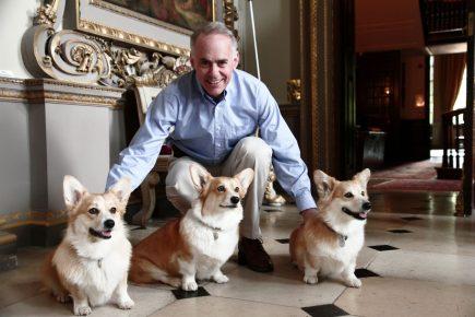 Собаки королевы Англии