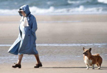 Прогулка королевы по берегу
