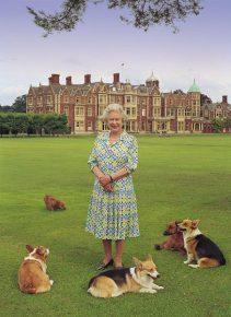 Английская королева в окружении собак