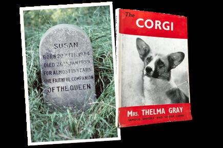 Памятник собаке английской королевы