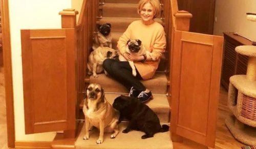 Дарья Донцова на лестнице с мопсами