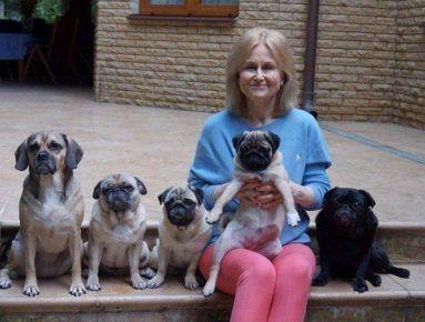 Собаки Дарьи Донцовой