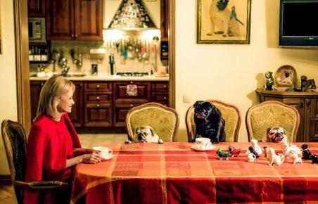 Дарья Донцова и мопсы пьют чай