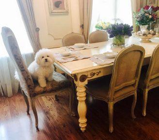 Джульетта за столом